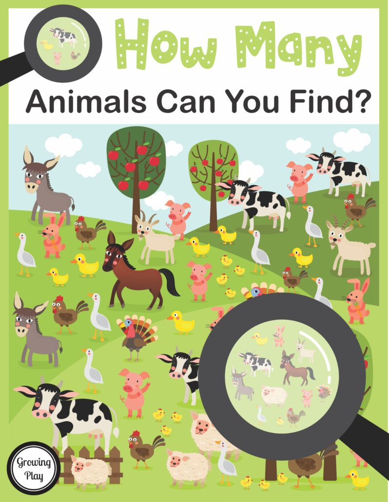 How Many Animals Can you Find Visual and Counting Game